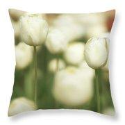 Sunsoaked Tulips #3 Throw Pillow