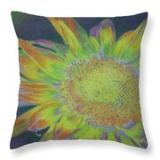 Sunverve Throw Pillow
