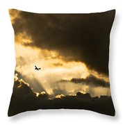 Sunvisors Down Throw Pillow