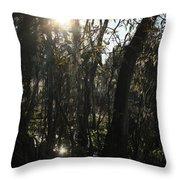 Sunwood Throw Pillow