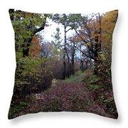 Superior Hiking Trail Throw Pillow