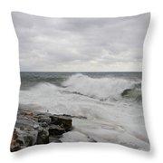 Superior Wild Waves Throw Pillow