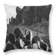 Superstition Mountain 2 Throw Pillow