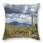 Superstition Shadows Throw Pillow
