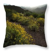 Superstition Spring Throw Pillow