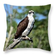 Supervisor Of Security Throw Pillow