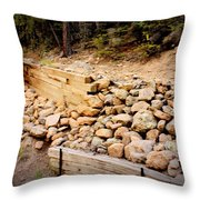 Support Throw Pillow by Beauty For God