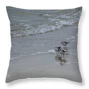 Surf And Birds Throw Pillow