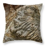 Surface Attention Throw Pillow