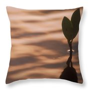 Surfacing Mangrove Throw Pillow