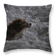 Surfer Dog 1 Throw Pillow