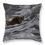 Surfer Dog 2 Throw Pillow