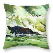 Surfers Dream Throw Pillow