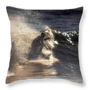 Surfs Up In Socal Throw Pillow