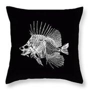 Surgeonfish Skeleton In Silver On Black  Throw Pillow