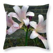 Surprise Lilies Throw Pillow