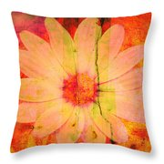 Surprise Me Throw Pillow
