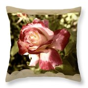 Surprise Rose Throw Pillow