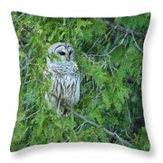 Surprise Visitor II Throw Pillow