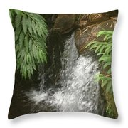 Surprising Stream Throw Pillow