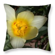Surprising Sunny Tulip Throw Pillow