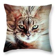 Surreal Cat Throw Pillow