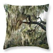 Surreal Gothic Savannah Georgia Trees With Hanging Spanish Moss Throw Pillow