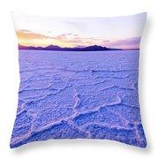 Surreal Salt Throw Pillow