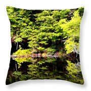 Surreal Springs Reflection Throw Pillow