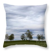 Surreal Trees And Cloudscape Throw Pillow