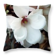 Surrounded By Beauty Throw Pillow