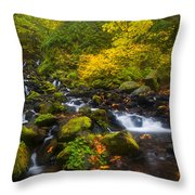 Surrounded By Fall Color Throw Pillow