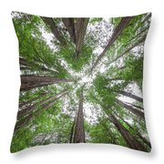 Surrounded By Giants Throw Pillow