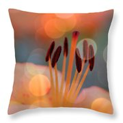 Surrounded By Soothing Sunshine Throw Pillow