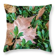 Surrounded Leaf Throw Pillow