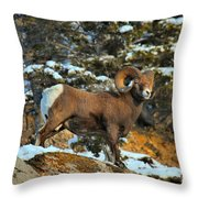Surverying The Jasper Landscape Throw Pillow