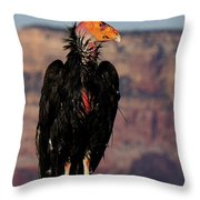 Surveying The Canyon Throw Pillow