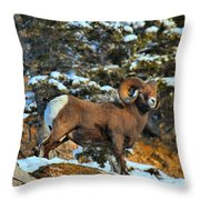 Surveying The Jasper Landscape Throw Pillow