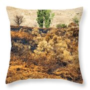 Survivors - After The Fire Throw Pillow