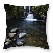 Susan Creek Falls Oregon 1 Throw Pillow