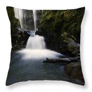 Susan Creek Falls Oregon 2 Throw Pillow
