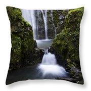 Susan Creek Falls Oregon 4 Throw Pillow