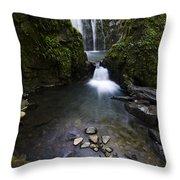 Susan Creek Falls Oregon 5 Throw Pillow