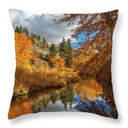 Susan River Reflections Throw Pillow