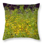 Susans In A Green Field Throw Pillow