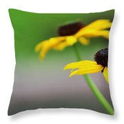 Susans Throw Pillow