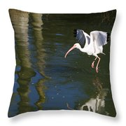 Suspended In Flight Throw Pillow