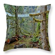 Suspended In The Rain Forest Throw Pillow