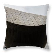 Suspended Semi-circle Throw Pillow
