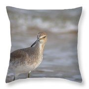 Suspicious Willet Throw Pillow